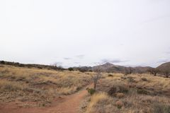 Krajobraz Arizona usa Fotografia Stock