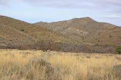 Krajobraz Arizona usa Zdjęcia Royalty Free