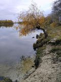 Krajobraz, bank rzeka Fotografia Stock
