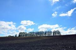 Krajobraz Biei, Hokkaido. Obraz Stock