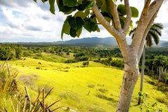 Krajobraz blisko Bahia Honda zdjęcie stock