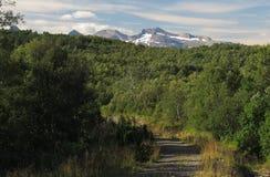 Krajobraz blisko Bodo Zdjęcie Stock