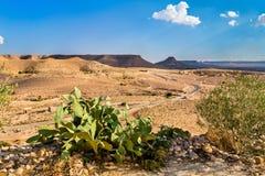 Krajobraz blisko Doiret wioski w Południowym Tunezja Zdjęcia Stock
