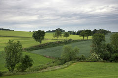 Krajobraz blisko Wijlre Zdjęcie Royalty Free