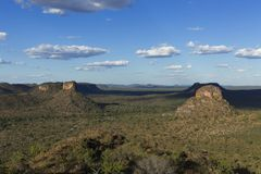 Krajobraz Brazylijski cerrado zdjęcie stock