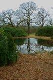Krajobraz, Chatsworth park, nr Rzeczny Derwent, Szczytowy okręg, Derbyshire, Obraz Stock