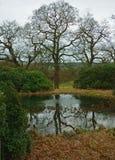 Krajobraz, Chatsworth park, nr Rzeczny Derwent, Szczytowy okręg, Derbyshire, Zdjęcie Stock
