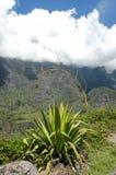 Krajobraz Cirque Cilaos na losu angeles spotkania wyspie Zdjęcia Stock