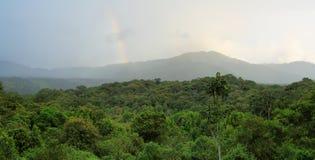 Krajobraz cloudforest ecuadorian Zdjęcie Royalty Free
