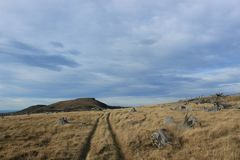 Krajobraz Deponuje pieniądze półwysepa, Nowa Zelandia Obraz Stock