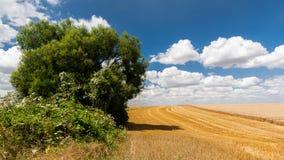 Krajobraz francuz Vexin Fotografia Royalty Free