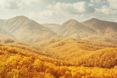 Krajobraz góry w jesieni Zdjęcia Stock