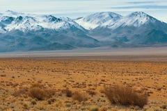 Krajobraz góry w Zachodnim Mongolia i step Podróż Obrazy Royalty Free