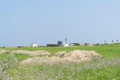 Krajobraz Gapado wioska Obrazy Royalty Free