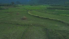 Krajobraz Guilin Li rzeka Zdjęcia Stock