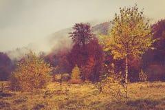 Krajobraz halna jesień Zdjęcia Royalty Free