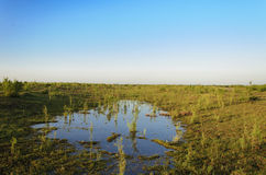 Krajobraz i natura Zdjęcie Stock