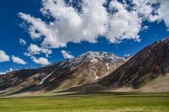 Krajobraz jęczmienia pola śniegu góra fotografia royalty free