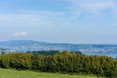 Krajobraz jeziorny Zurich w lecie z drzewną linią wycieczkuje śladu Switzerland turystyki podróży miejsca przeznaczenia natury pa Zdjęcie Stock