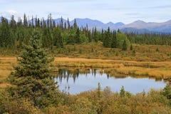Krajobraz jezioro Fotografia Royalty Free