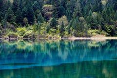 Krajobraz jezioro i drzewa Zdjęcia Royalty Free