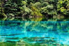 Krajobraz jezioro i drzewa Fotografia Royalty Free