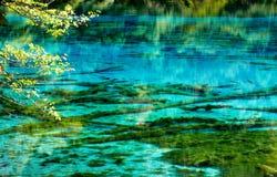 Krajobraz jezioro i drzewa Fotografia Stock