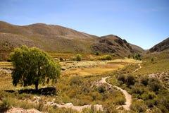 Krajobraz Jujuy zdjęcia royalty free
