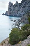 krajobraz kołysa morze Fotografia Stock