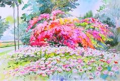 Krajobraz kolorowy pawiego kwiatu emocja w czerwieni i drzewo royalty ilustracja
