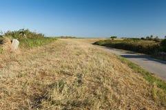 Krajobraz laguna przy Po delty rzecznym parkiem narodowym, Ita Zdjęcie Stock