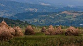 Krajobraz 'Lapus' prowincją zdjęcia stock