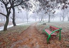 Krajobraz las w jesieni Fotografia Royalty Free