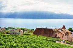 Krajobraz Lavaux winnicy tarasy wycieczkuje ślad Szwajcaria Fotografia Stock