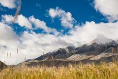 Krajobraz leh ladakh, ind Zdjęcie Stock