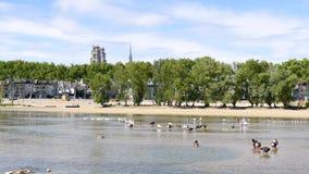 Krajobraz miasteczko Orléans w Francja zbiory wideo