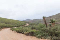 Krajobraz na Oude Muragie drodze Fotografia Stock