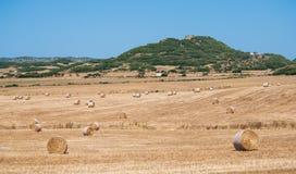 Krajobraz na polu z wiele belami siano rozpraszał w wietrznym zdjęcia stock