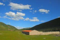 Krajobraz na Tybetańskim plateau Obraz Stock