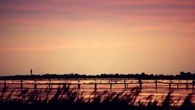 Krajobraz nad jeziorem lub rzeką z latarnią morską daleką daleko zbiory