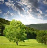 krajobraz nad sumava zmierzchem Zdjęcie Stock