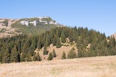 Krajobraz od Bucegi gór Fotografia Royalty Free