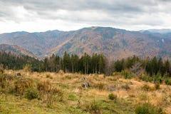 Krajobraz od Bucegi gór Obraz Royalty Free