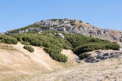 Krajobraz od Bucegi gór Zdjęcie Royalty Free