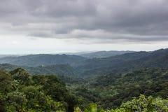 Krajobraz od El Yunque Krajowego tropikalnego lasu deszczowego w Puerto Rico, Stany Zjednoczone Ameryka Obrazy Royalty Free