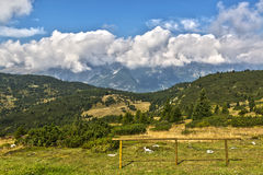 Krajobraz od Paganella średniogórza Obraz Royalty Free
