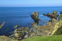 Krajobraz od Sinemorets - statki Obraz Royalty Free