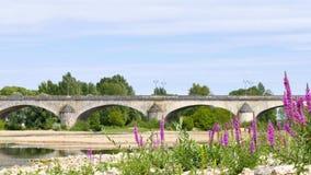 Krajobraz Orléans, miasteczko w Francja zbiory wideo