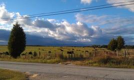 Krajobraz Oszałamiający Zdjęcie Stock