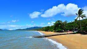 Krajobraz Palmowa zatoczka Queensland Australia Fotografia Stock